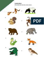 WORKSHEETS-ANIMALS.docx