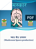 Mushroom Spawn Production
