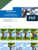 Introducción y Ciclo de Vida de Los Proyectos