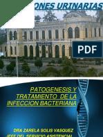 T 1.1 Infecciones urinarias.pdf
