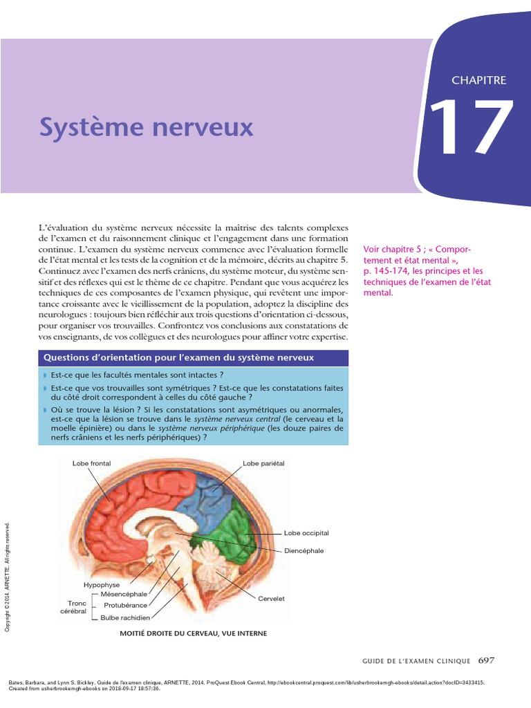 Vascularisation Du Coeur Ebook Download