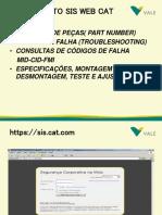 SIS WEB CAT.ppt