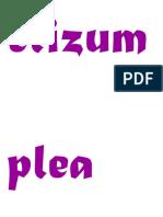 Eli Zum Plea