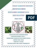 Jaiprakash Singh 5pv Plant SBA.docx
