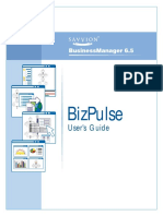 BizPulse Users Guide