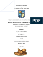 proyecto-inversion-arracacha.docx