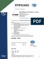 QM15_243230 BASF 2017_ES-MX.pdf