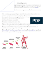 Niveles de Organización.pdf