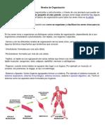 Organización del ser vivo.pdf