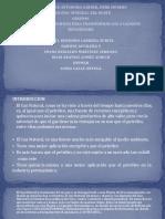 GRUPO 1 DIAPOSITIVAS METANOL-1.pptx