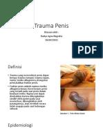 116663702-Trauma-Penis