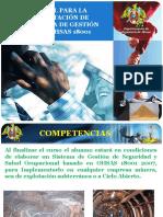 MANUAL PARA LA IMPLANTACIÓN DE PRL 190818.pdf