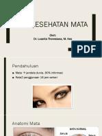Presentasi Penyuluhan Kesehatan Mata