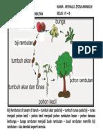 353401541-Daur-Hidup-Rambutan.pdf