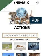 3._AnimalActionsS