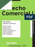 Manual de Derecho Comercial I-Kopieren.pdf