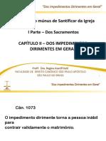 2017 Dos Impedimentos Dirimentes.pdf