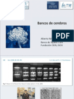 Bancos de Cerebros Curso Valencia Abril 2018 Red