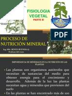 Fisiologia Vegetal III