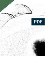 aasdf.pdf