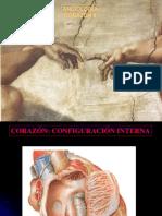 Presentacion anatomia del Corazón