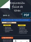 Expo Cx Toracica