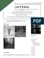 Caffenol_ TriX 400.pdf