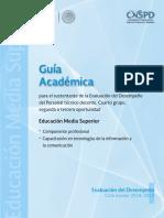 guia academica del servicio profesional docente.