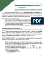 17 - Imunodeficiências.pdf