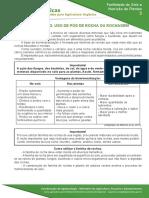 03 Biomineralizaçao Uso de Pos de Rocha Ou Rochagem - GOV