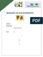 Manjar de Aguaymanto Avance