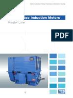WEG-three-phase-induction-motors-master-line-50019089-brochure-english.pdf