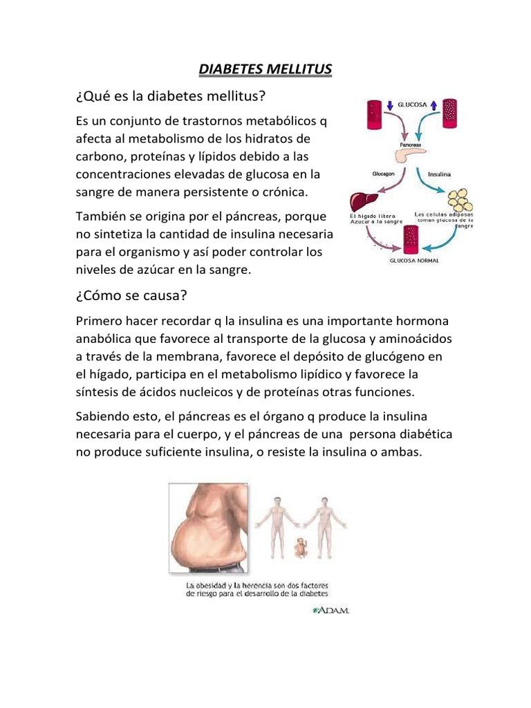 herencia diabetes mellitus