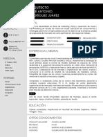 CV José Antonio Rodríguez Juárez    .pdf
