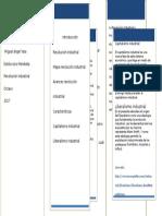 349545721-Revolucion-industrial-1-docx.docx