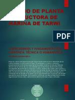 Diseno de Planta Productora de Harina de Tarwi