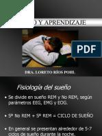 Fisiologia Sueño