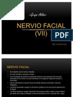 N. Facial (VII)