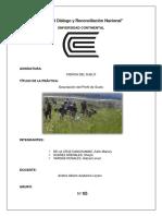 informe sobre perfil de suelos