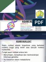 PPT BIOKIMIA 2 (asam nukleat).ppt