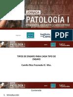 jornada-patologia