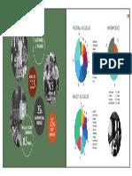 PGPX Class Profile