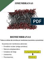 8643570-15617-1-SM_Epistemologia e Teorias Da Educação No Brasil (2)