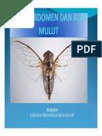 Ch.5_Sayap,_Abdomen_dan_Alat_mulut.pdf