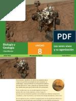 TEMA 8- Organización