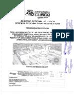 TDR firmado por comite.pdf
