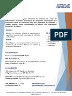 Curriculum Empresarial Flowsis