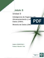 Lectura 3 Inteligencia de Negocios Almacenamiento y Extracción de Datos