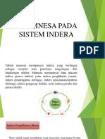 Ppt Sistem Indera