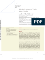 The Pathogenesis of Ebola Virus Disease